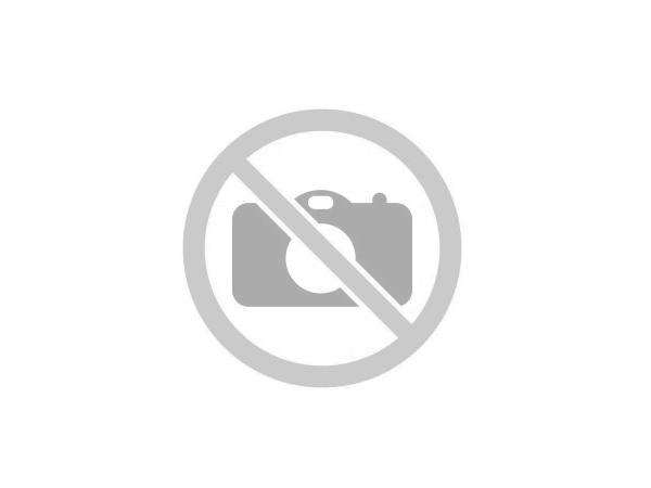 комплект спирачно феродо, дискови спирачки BD S252